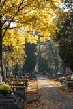 WARSZAWA POLEN - Oktober 31, 2015: Höst på den Brodno kyrkogården Arkivfoton