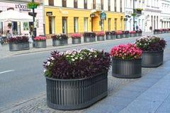 Warszawa, Polska Dekoracyjni kwiatów łóżka na Novy pacnięcia ulicie w letnim dniu Obraz Stock