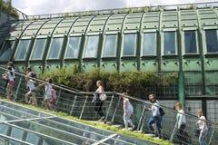 Warszawski dachu ogród Zdjęcie Stock
