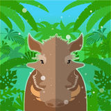 Wart-hog on the Jungle Background Stock Photo