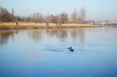 Warta river Royalty Free Stock Photography