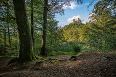 The Wartburg castle Royalty Free Stock Photography