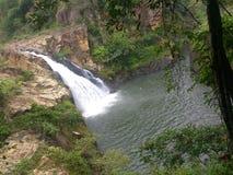 Warterfall de Sri Lanka fotografia de stock