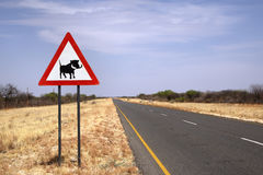 Warthog που διασχίζει το σημάδι στον της Ναμίμπια δρόμο Στοκ φωτογραφία με δικαίωμα ελεύθερης χρήσης