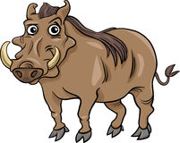 Warthog animal cartoon illustration Stock Photography