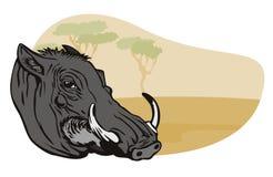 Warthog mit Safarihintergrund lizenzfreie abbildung