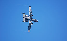 Warthog Plane Stock Photography
