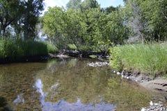Wartownik woda Zdjęcie Royalty Free
