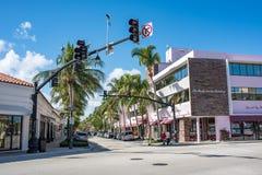 Warty aleję w Luksusowy palm beach, Floryda Zdjęcia Stock
