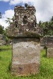 Waruga eller stensarkofag Arkivbilder