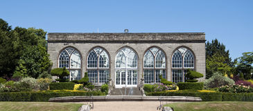 warwick павлина orangery сада замока Стоковые Фото