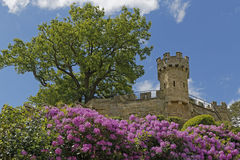 Warwick castle Mound. Image of the Mound taken in warwick castle, warwick, england royalty free stock photography