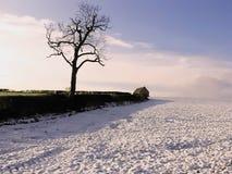 Warwickshire-Ackerland Stockbild