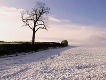 Warwickshire farmland Stock Image