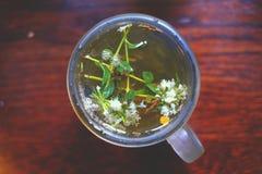 Warząca ziołowa herbata Zdjęcia Royalty Free