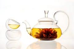 Warzący herbaciany kwiat w szklanym teapot obraz royalty free