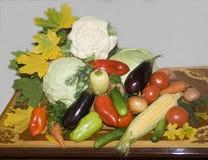 warzywa żyje Świezi warzywa na stole Fotografia Stock