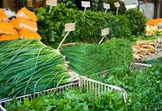warzywa zdjęcie stock