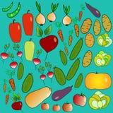 1 warzywa Obraz Royalty Free