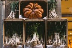 Warzywa Obraz Stock
