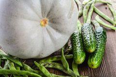 Warzywa, bania, ogórki i fasolki szparagowe, Fotografia Stock