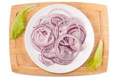warzywa białe tło Cebula, zielenie, tnąca deska, talerz na białym tle Fotografia Stock