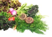 Warzywa, biały tło Zdjęcia Royalty Free