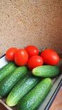 Warzywa dla sałatki Zdjęcie Royalty Free