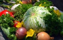 Warzywa dla twój projekta Zdjęcia Stock
