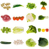 warzywa gromadzenia danych Obraz Stock
