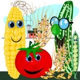 Warzywa i adra na gospodarstwie rolnym ilustracja wektor