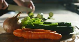 warzywa i akcje strzelają w 4k, 6k postanowieniu profesjonalista agencją lub, karmowi włoscy przemysły i profesjonalistów szefowi zbiory wideo