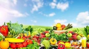 Warzywa i owoc nad niebieskiego nieba tłem Zdjęcia Royalty Free