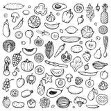 Warzywa i owoc Ustawiająca ręka rysujący doodle elementy Zdjęcia Royalty Free