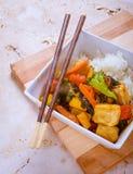 Warzywa i Tofu fertania dłoniak Obrazy Royalty Free