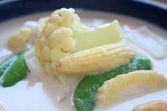 Warzywa kokosowego mleka curry obrazy stock
