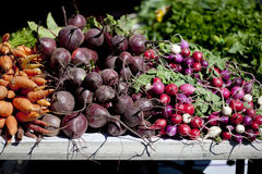 Warzywa kolorowe Wiązki zdjęcia stock