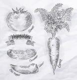 Warzywa marchewki, pomidor, chili pieprze, ogórek Zdjęcie Stock
