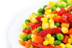 warzywa mrożone Zdjęcie Royalty Free