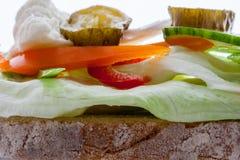 Warzywa na spłodzonym Fotografia Royalty Free