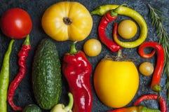 Warzywa na wypiekowej tacy Obraz Stock