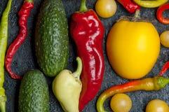 Warzywa na wypiekowej tacy Zdjęcia Stock
