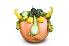 warzywa odosobniony dyniowy zucchini Obraz Stock