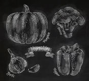Warzywa pieprzą, bania, czosnek, brokuły piszą kredą royalty ilustracja