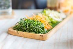 Warzywa Ryżowy sałatkowy ustawiający na drewno talerzu Obrazy Royalty Free