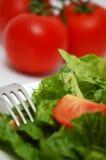 warzywa sałatkowy Zdjęcia Royalty Free