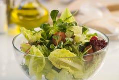 warzywa sałatkowy Fotografia Stock