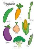 Warzywa ustawiający z ogórkiem, marchewka, asparagus, oberżyna, brokuły, cebula, grochy tła ilustracyjny rekinu wektoru biel Zdjęcie Royalty Free