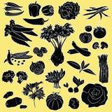 Warzywa ustawiający Fotografia Royalty Free