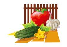 Warzywa ustawiający czosnku pomidorowy ogórek - ilustracja royalty ilustracja
